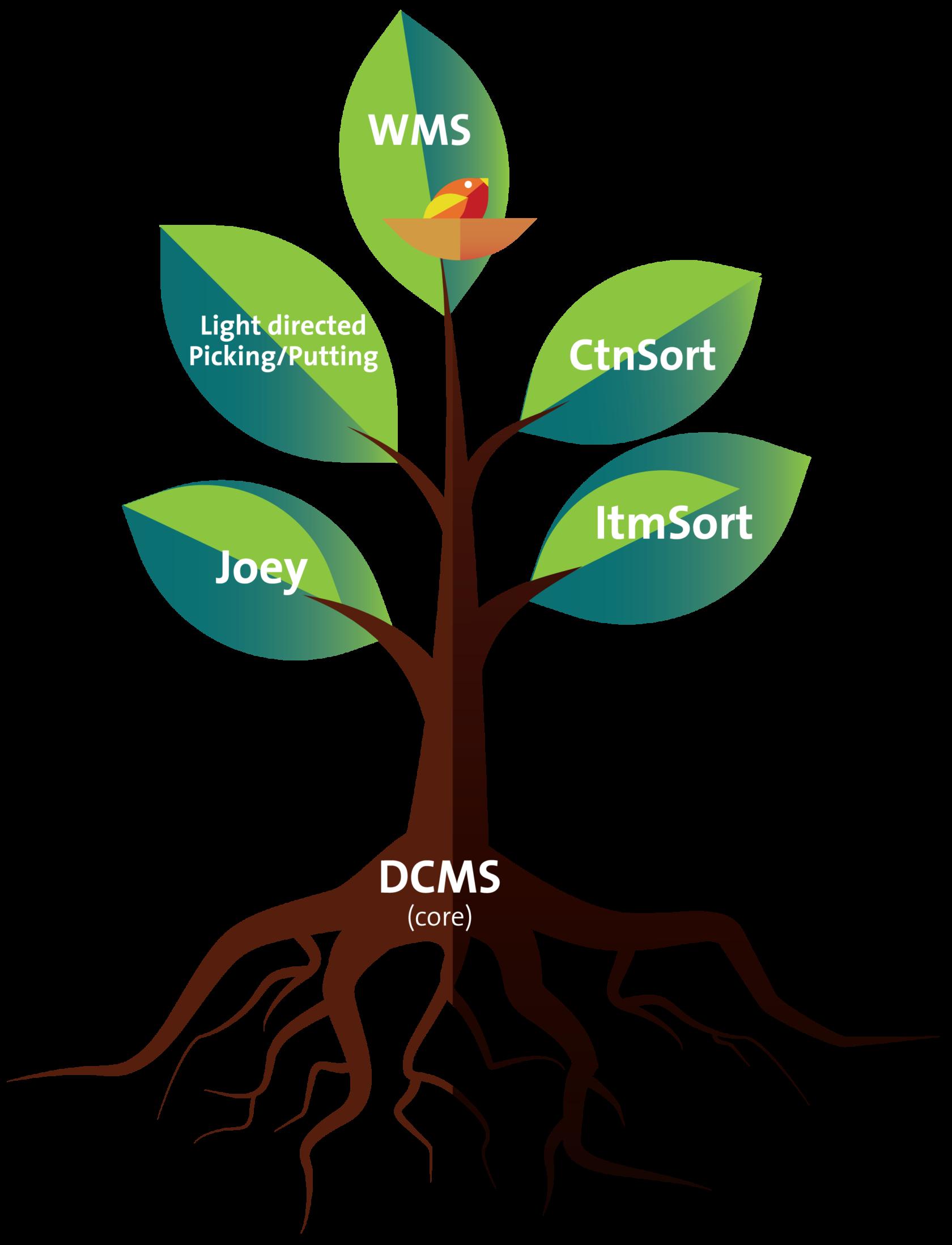 DCMS-tree